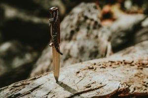knife stuck in a log